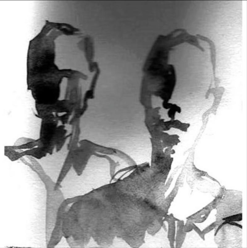 AUDIO Ce-a ieșit când Ricardo Villalobos și Petre Inspirescu s-au intersectat în studio